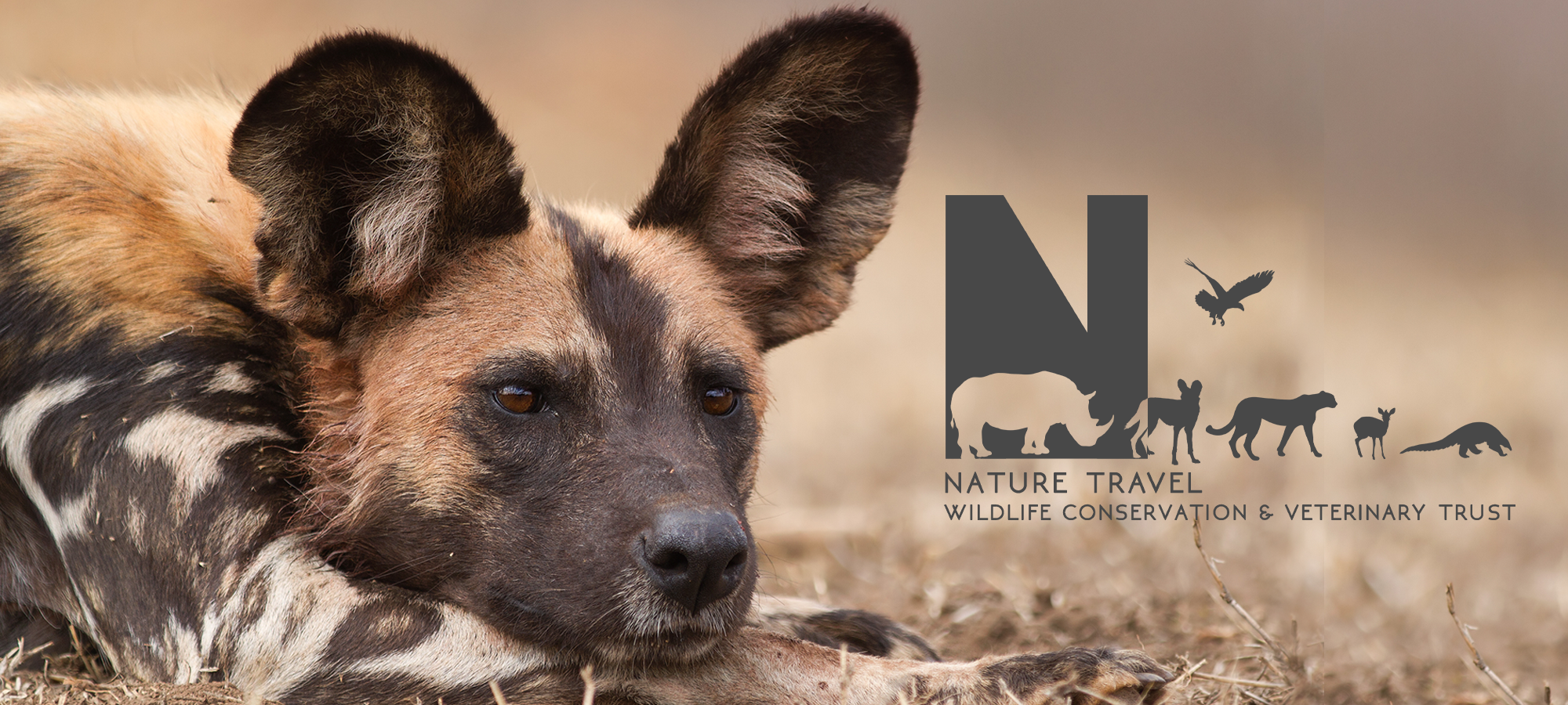 Nature Travel Wildlife Conservation & Veterinary Trust